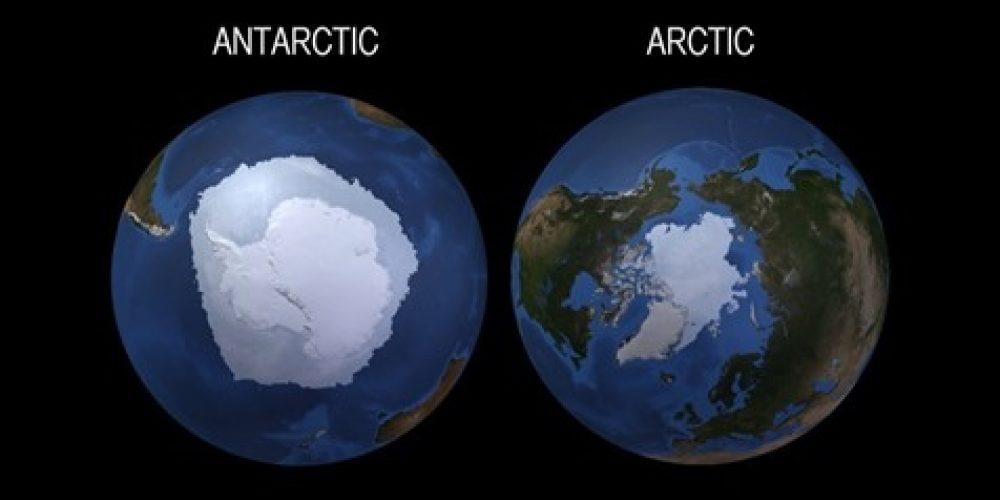Kuzey Kutbu ve Antarktika Deniz Buzu: Nasıl Farklılar?